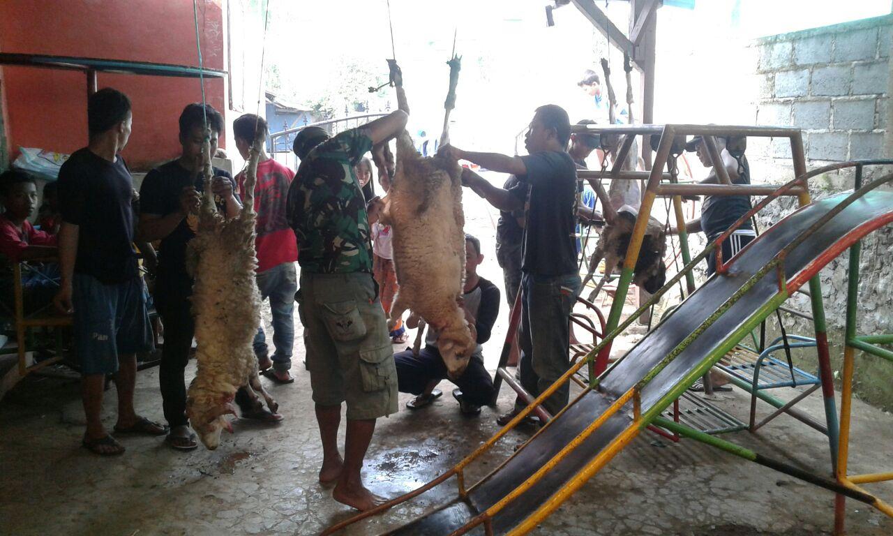 Photo of Yayasan Al-Jabar Kurban 3 Domba, Berikut Ini Foto-fotonya