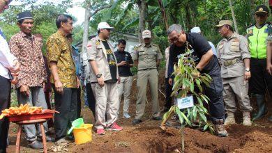 Photo of Bupati Sukabumi Tanam 4000 Durian Hitam